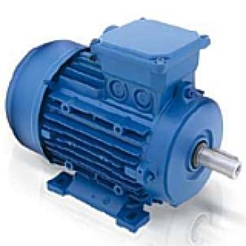 Three Phase Induction Motors