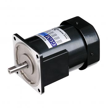 Small Induction Motors