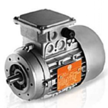 Induction Motor suited to gearbox