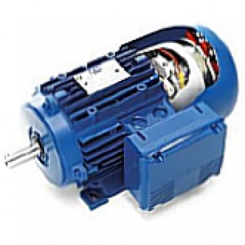 Brake Motors to IEC (Gradual braking)