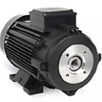 Induction motors with Hollow shaft