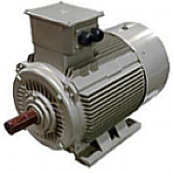 Reluctance Motor - SRCa Series